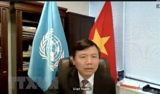 Vietnam joins UNSC open debate on peace operation, human rights hinh anh 1