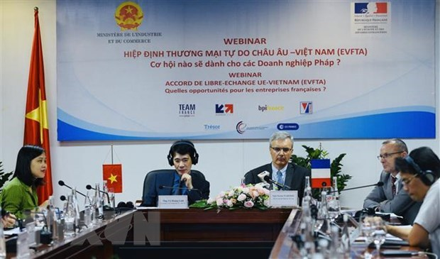 Webinar seeks ways for firms of Vietnam, France to capitalise on EVFTA hinh anh 1