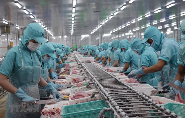 Mekong Delta firms see new orders down 80.7 percent due to COVID-19 hinh anh 1