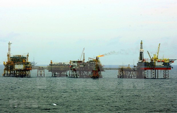 PVEP's oil & gas output surpasses six-month target hinh anh 1