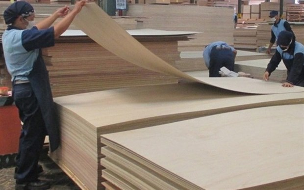 Plywood exports face trade defence risks in US, RoK hinh anh 1
