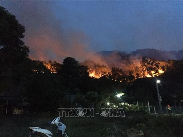 Forest fires a burning problem during dry season hinh anh 1