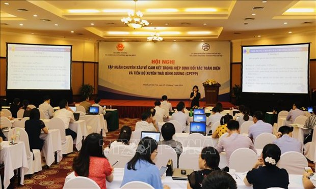 Conference looks at making full use of CPTPP hinh anh 1
