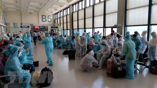 Over 240 Vietnamese citizens brought home from Singapore hinh anh 1