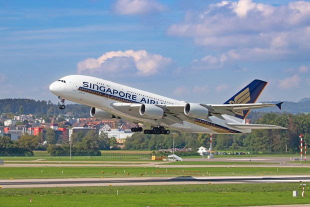 Singapore Airlines plans to operate at 7 pct of capacity in August hinh anh 1