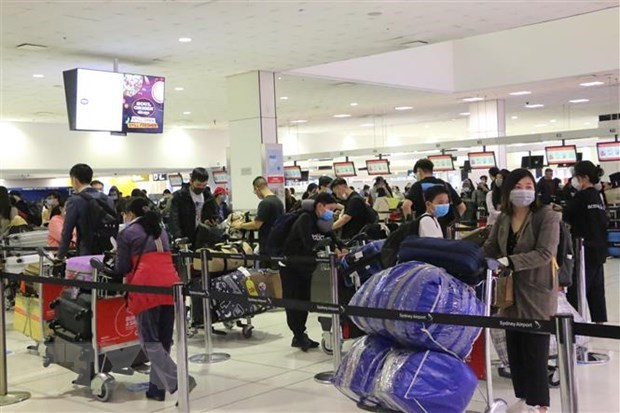 350 Vietnamese citizens fly home from Australia hinh anh 1
