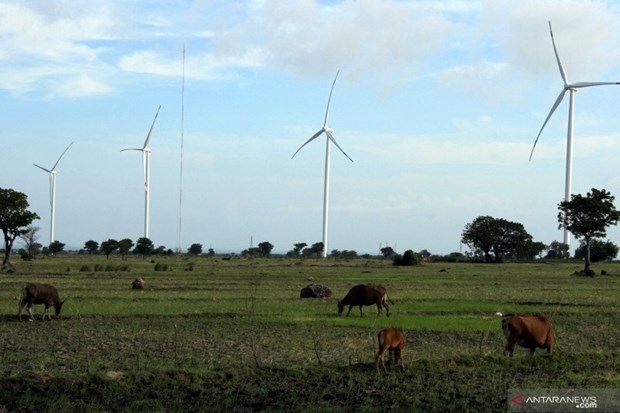 Indonesia holds potential of 442.4GW in renewable energies hinh anh 1