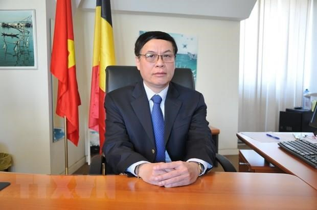 Belgian firms updated on business opportunities in Vietnam hinh anh 1
