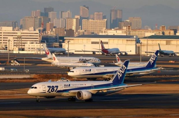 All Nippon Airways to resume Tokyo-HCM City route in August hinh anh 1