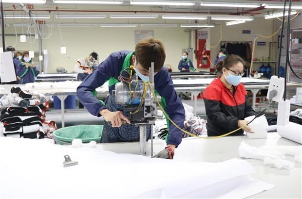Vietnam looks to use EVFTA to boost exports to Netherlands hinh anh 1