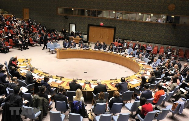 Deputy FM: Vietnam performing UNSC role well hinh anh 1