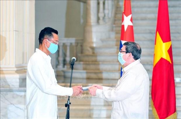 Cuban friendship medal bestowed upon Vietnamese ambassador hinh anh 1
