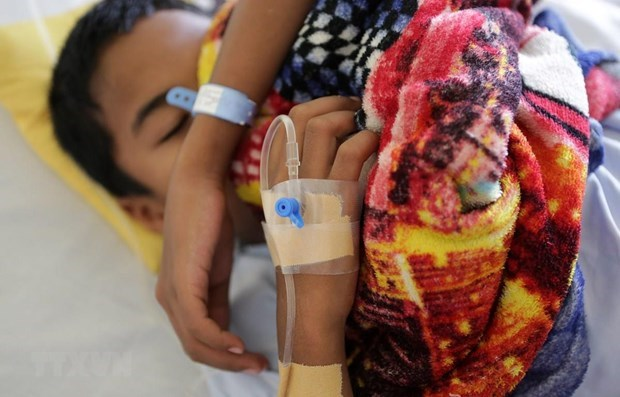Myanmar issues alert for dengue fever hinh anh 1