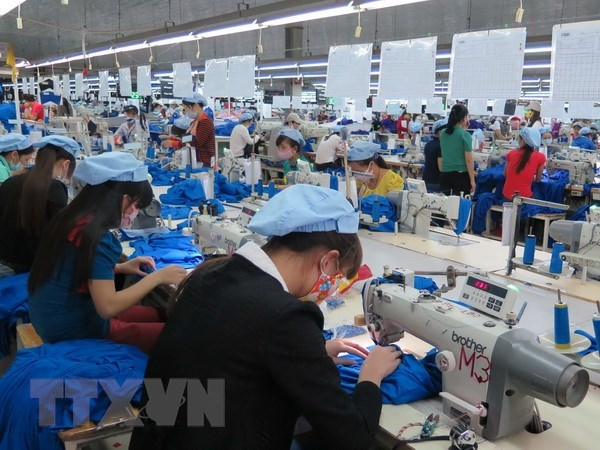 Garment firm expects revenue drop as partner's parent goes bankrupt hinh anh 1