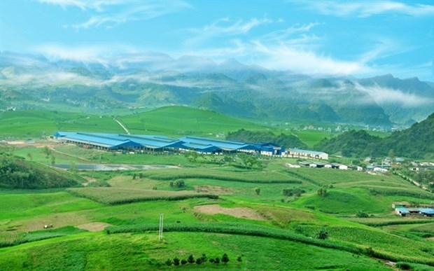 Moc Chau Milk to sell shares, raise capital hinh anh 1