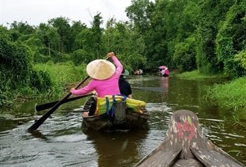 Dong Thap province to focus on boosting tourism hinh anh 1