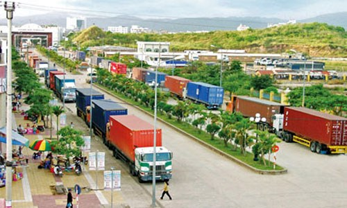 Business licences to be required for internal transport hinh anh 1