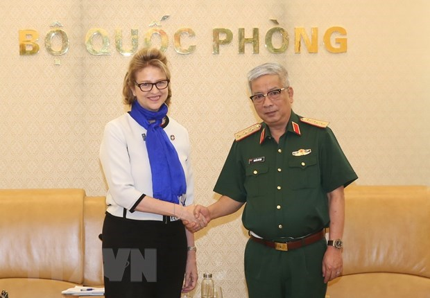 Defence Deputy Minister receives UNDP Resident Representative hinh anh 1