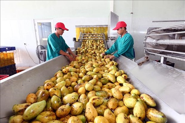 Companies urged to build farm produce brands: Workshop hinh anh 1