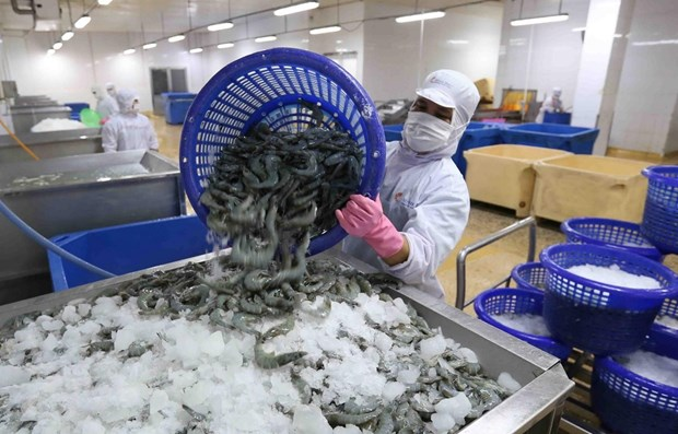 Shrimp exports up 5.7 percent in H1 despite COVID-19 hinh anh 1