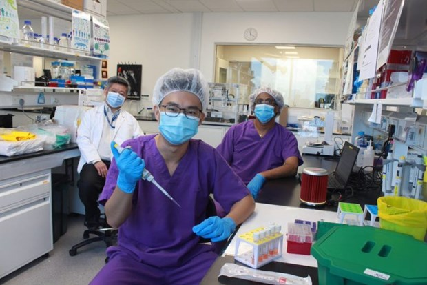 Singapore scientists find out rapid COVID-19 test method hinh anh 1