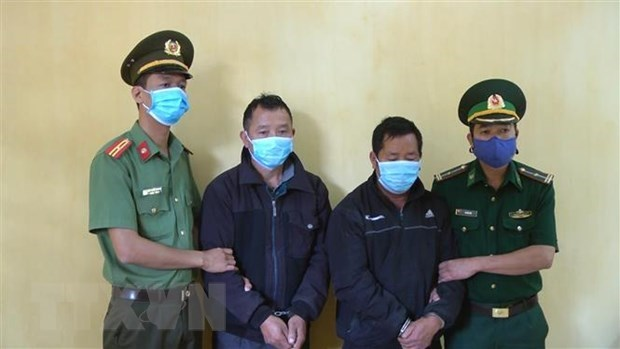 Legal procedures started against immigrant traffickers hinh anh 1