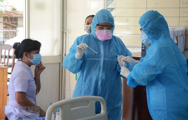 Experts analyse data on COVID-19 in Da Nang hinh anh 1