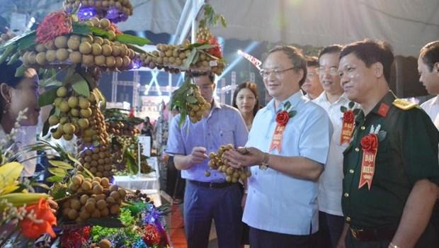 Hung Yen Longan Festival 2020 opens hinh anh 1