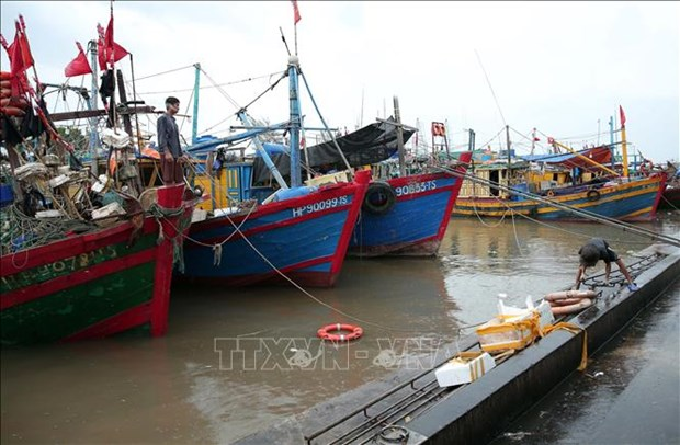 Meeting held to direct response to Storm Sinlaku hinh anh 1