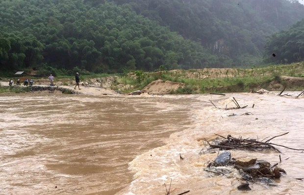 Downpours cause serious damage in localities hinh anh 1