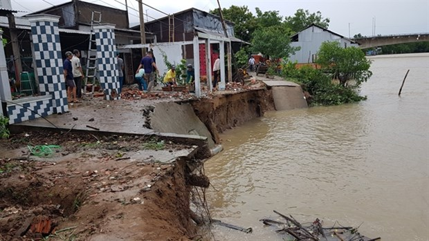 Heavy rains, strong winds damage houses in Mekong Delta hinh anh 1