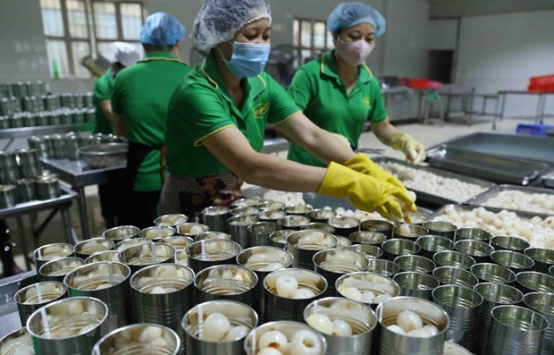 Economic growth projected to reach about 7 percent in 2021 hinh anh 1
