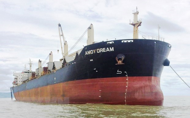 Anti-COVID-19 measures applied to Hong Kong's bulk carrier hinh anh 1