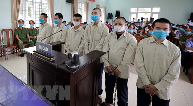 Illegal immigration organisers sent to prison hinh anh 1