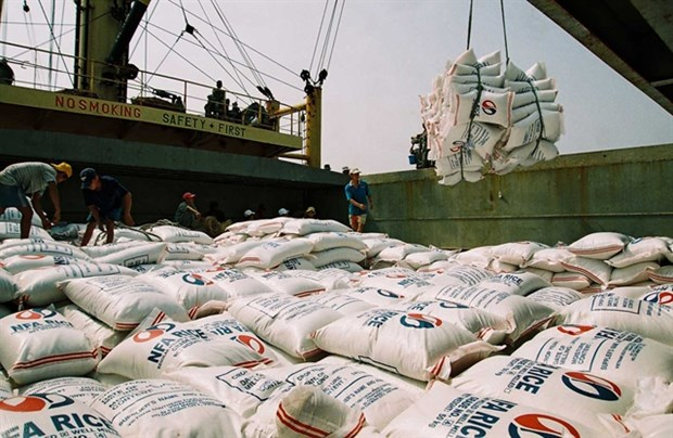 Vietnam exports 3.9 million tonnes of rice in seven months hinh anh 1