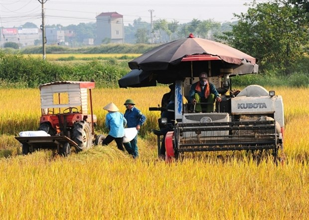 Policies needed to promote mechanical engineering in agriculture hinh anh 1