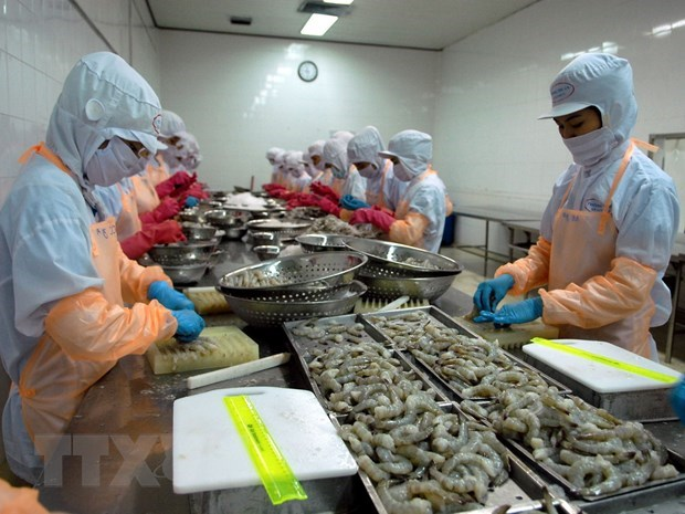 Vietnamese shrimp sells like hot cakes in US in H1 hinh anh 1