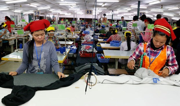 EU partially withdraws tariff preferences to Cambodia under EBA hinh anh 1