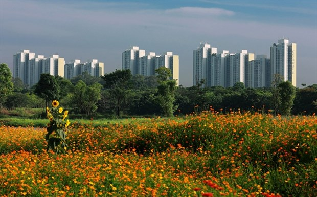 More regulations for developing green cities hinh anh 1