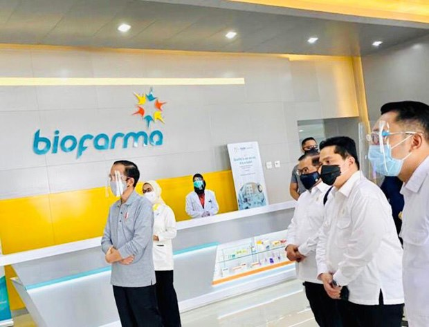 Indonesia aims to produce coronavirus vaccine by mid-2021 hinh anh 1