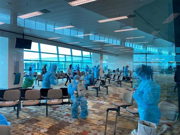 Over 240 Vietnamese citizens flown back home from Singapore hinh anh 1