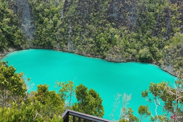 Indonesia spends 3.8 trillion IDR to revive tourism industry hinh anh 1