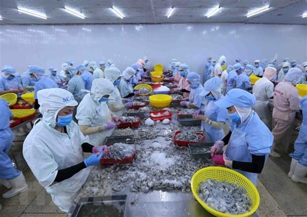 Bac Lieu moves towards country's shrimp production hub hinh anh 1