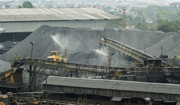 Coal imports surge during the COVID-19 pandemic hinh anh 1