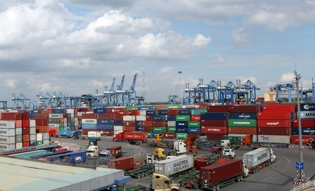 Cargo throughput of seaports still maintains growth in eight months hinh anh 1