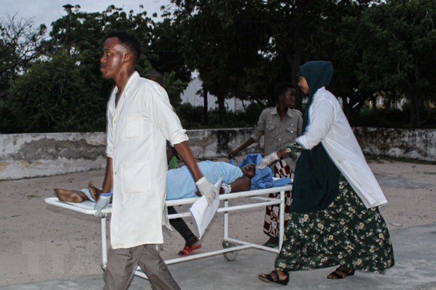 Vietnam calls on int'l community to support Somalia hinh anh 1