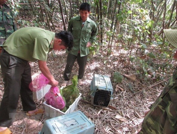Vietnam hailed for strides in protecting people, biodiversity hinh anh 1