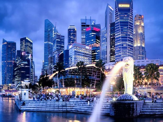"""Singapore, Indonesia to begin discussions on """"fast lane"""" for essential travel hinh anh 1"""