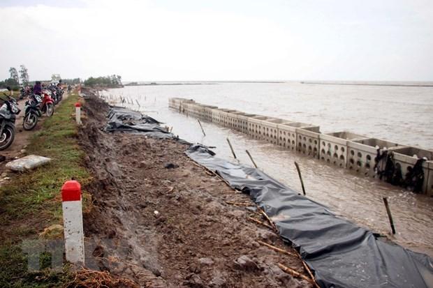 Ca Mau declares landslide emergency at western sea dykes hinh anh 1