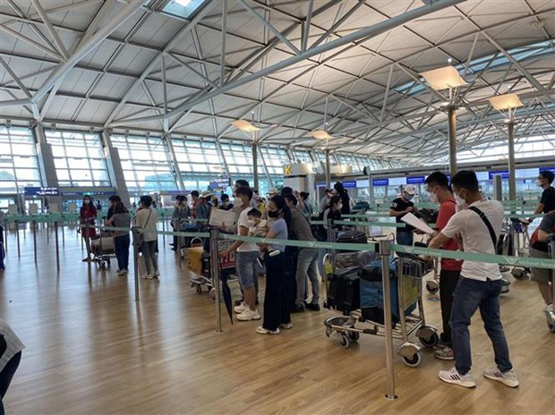 Over 250 Vietnamese citizens brought home from RoK hinh anh 1
